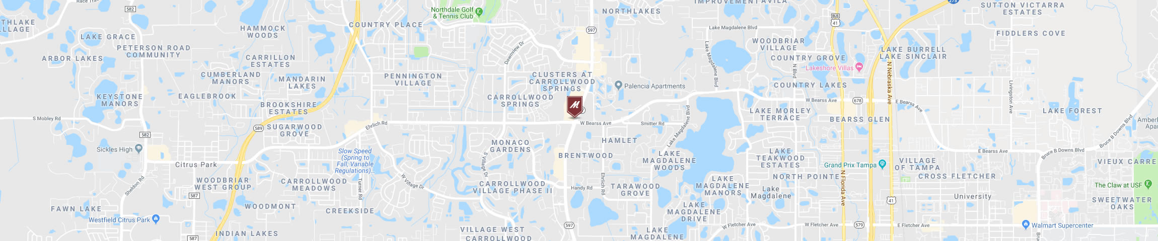 Google Map Image for the Romano's Macaroni Grill Carrollwood Location